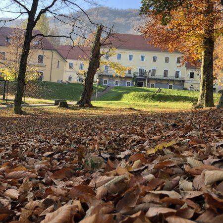 Dvorec Trebnik. Rogla-Pohorje